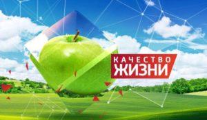 kachvo1